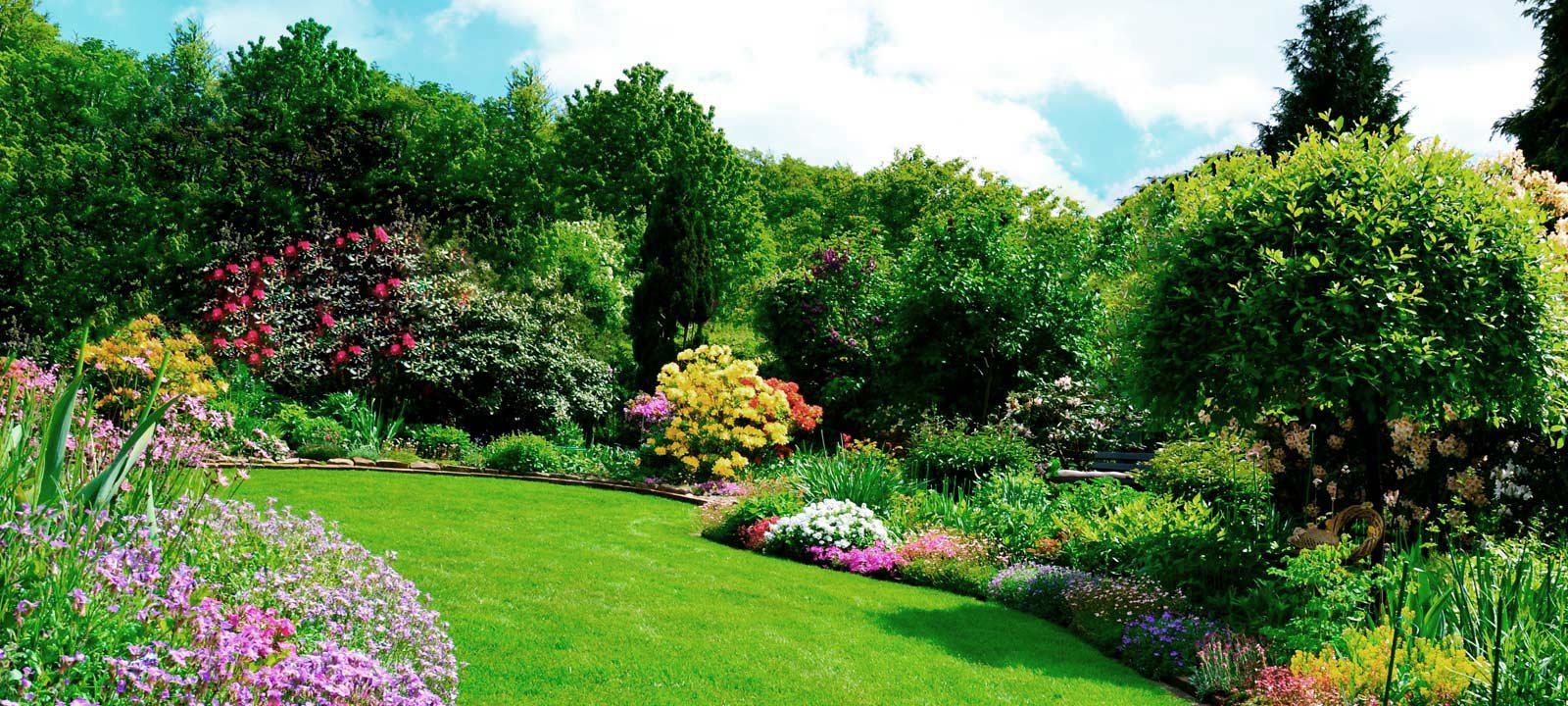 Hecke Zaun Sichtschutz Rgb Gartenbau Gartengestaltung